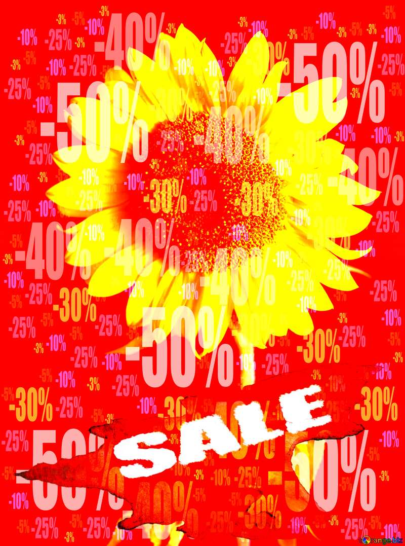 Summer Hot Sale background Frame Sunflower Flower Store discount dark background. №32798