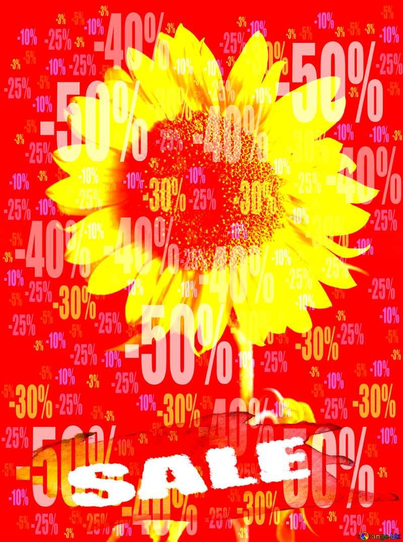 Summer Hot Sale background Frame Sunflower Flower Store discount dark background. №32798