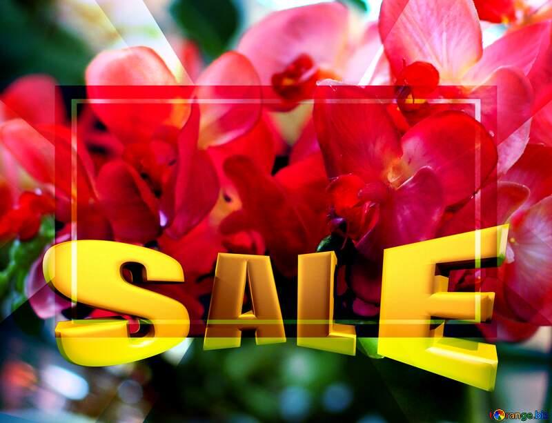 Sales promotion 3d Gold letters sale background Orchids Template №47105