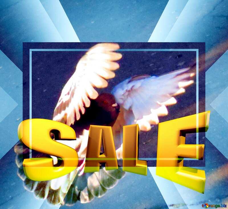Dove Pigeon flies Sales promotion 3d Gold letters sale background Template №42207