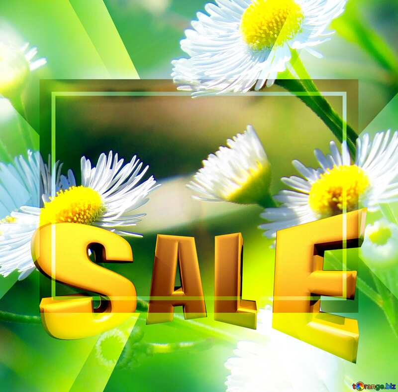 Sales promotion 3d Gold letters sale background Daisies Design Template №34394