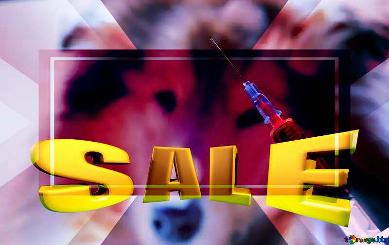 Sick dog Sales promotion 3d Gold letters sale background Veterinary Medicine Template №19289