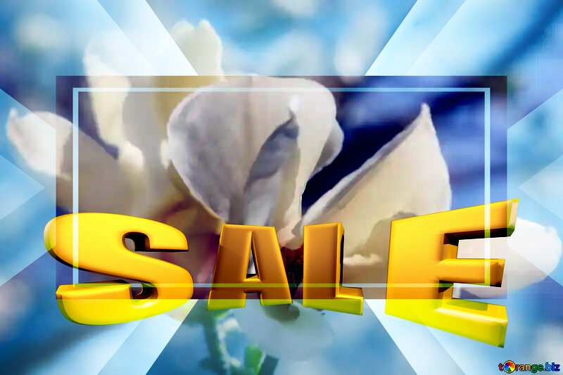 Background white beauty Sales promotion 3d Gold letters sale background №39721