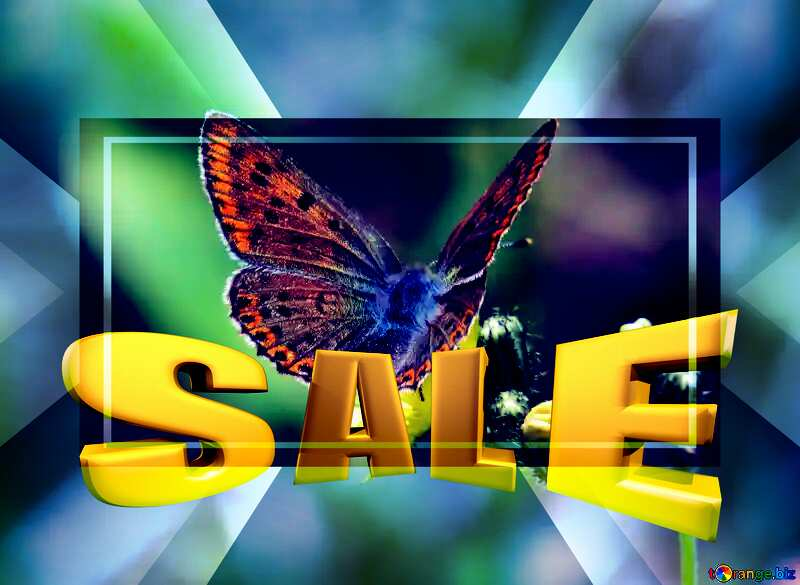 Flying butterfly Sales promotion 3d Gold letters sale background Template №25913