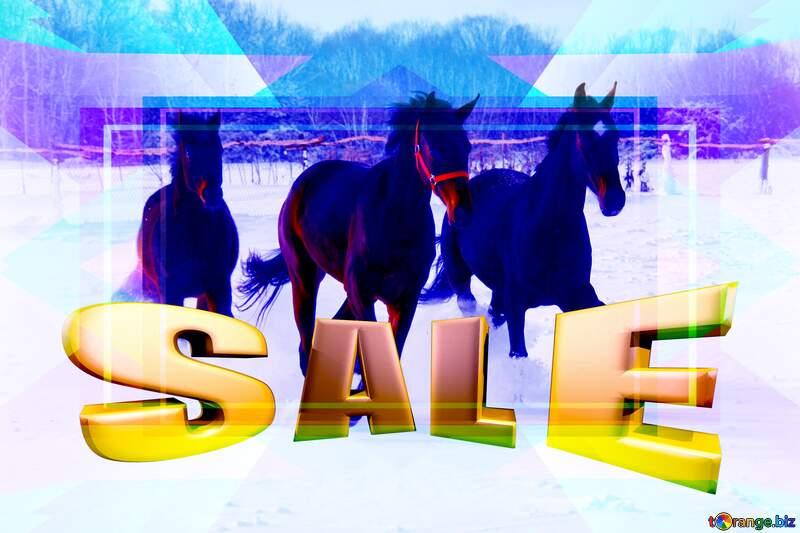 Three horses on snow Frame Design Template Illustration Sales promotion 3d Gold letters sale background №3981
