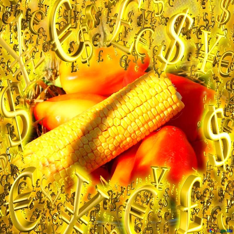 Autumn vegetables sales Gold money frame border 3d currency symbols business template №47308