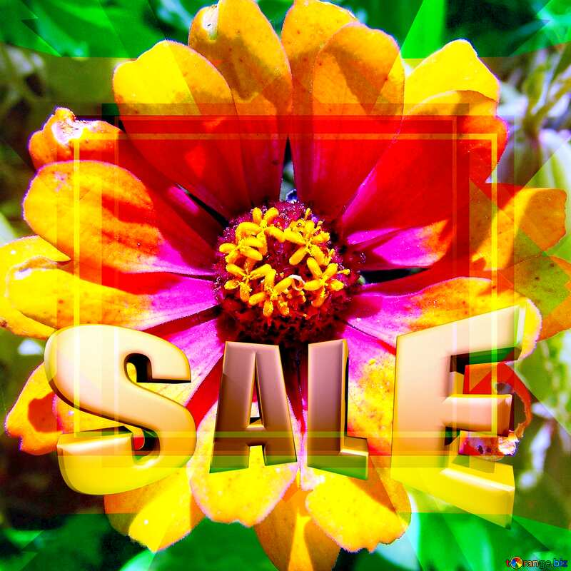 Flower Design Frame Layout Template Sales promotion 3d Gold letters sale background №3219