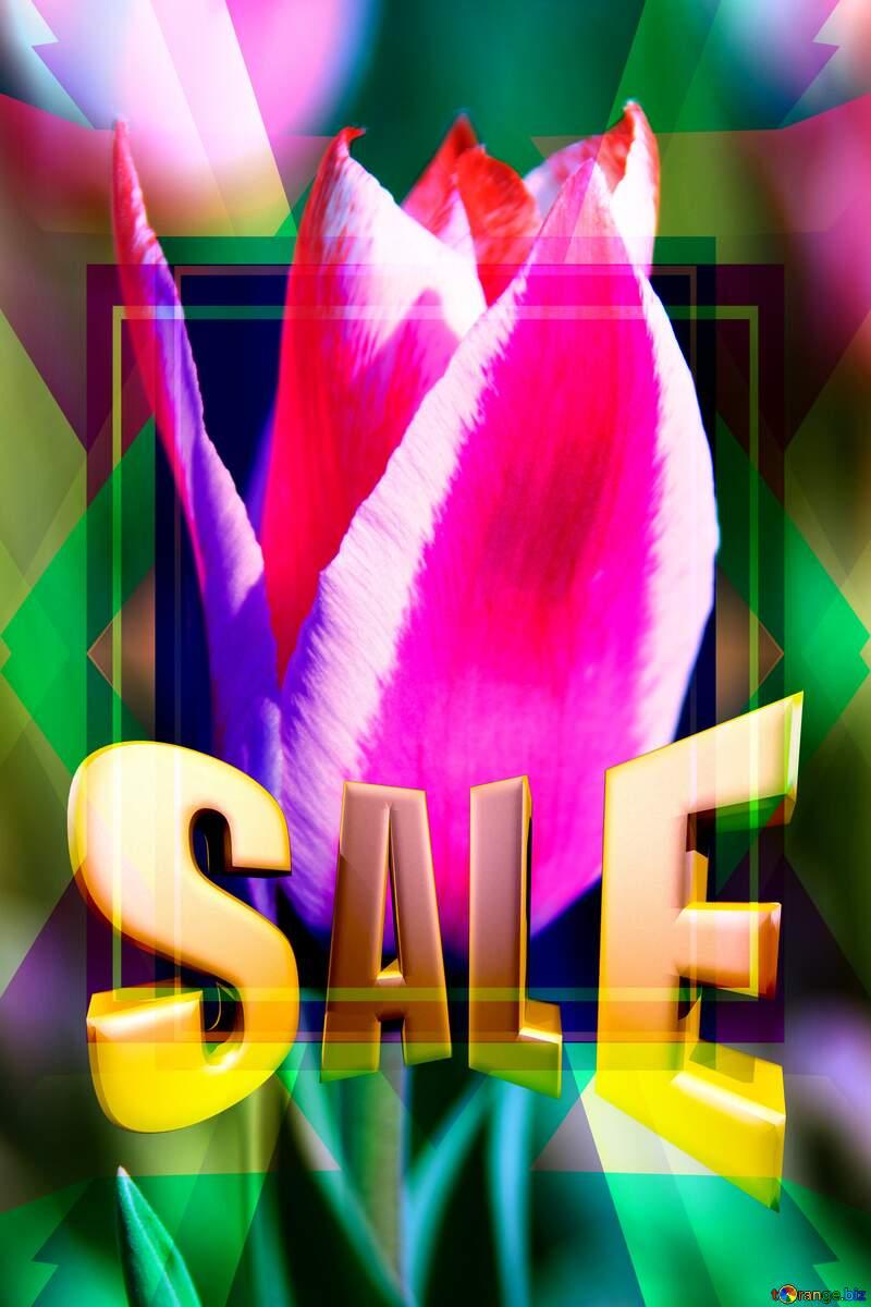 Pink Tulip Template Illustration Design Frame Sales promotion 3d Gold letters sale background №1662