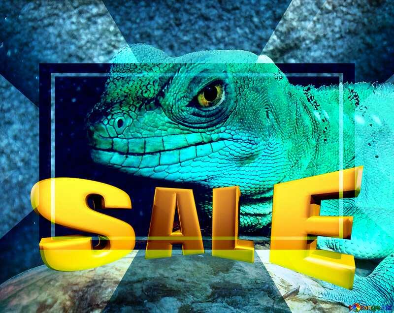 Lizard Sales promotion 3d Gold letters sale background Template №10697