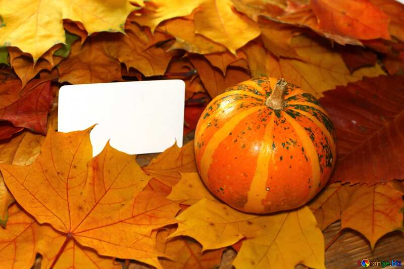 invitation for halloween  №35184