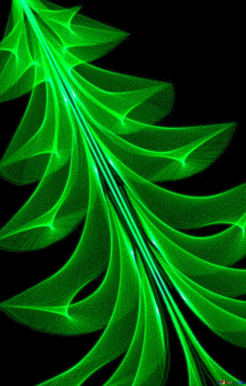 Image for profile picture Christmas tree. №40654