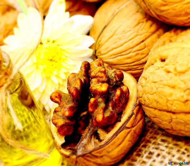 Image for profile picture Walnut oil. №46227