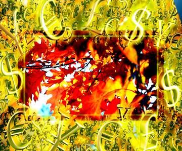 Vivid Colors. Fragment.