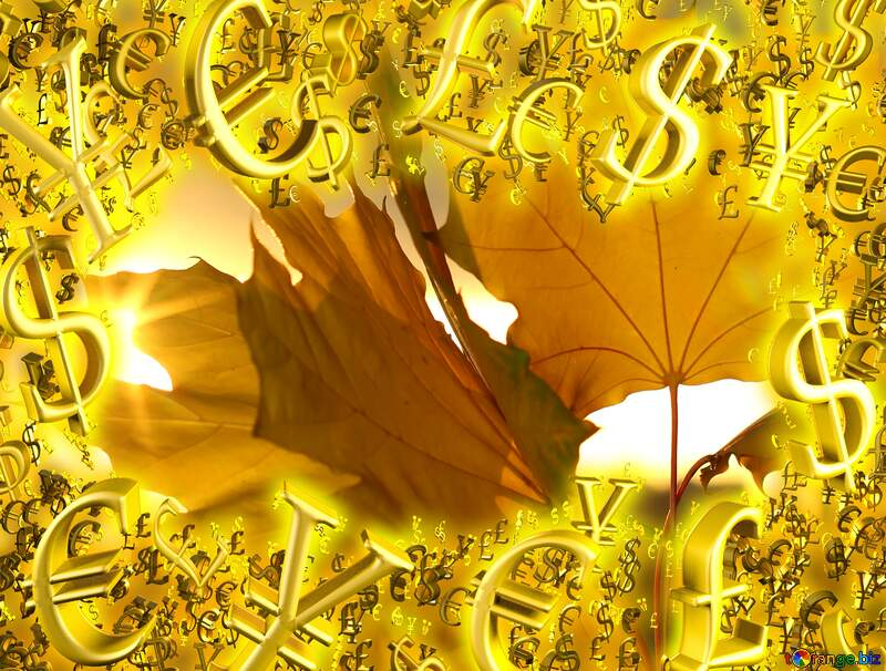 Autumn leaves Gold money frame border 3d currency symbols business template №40887