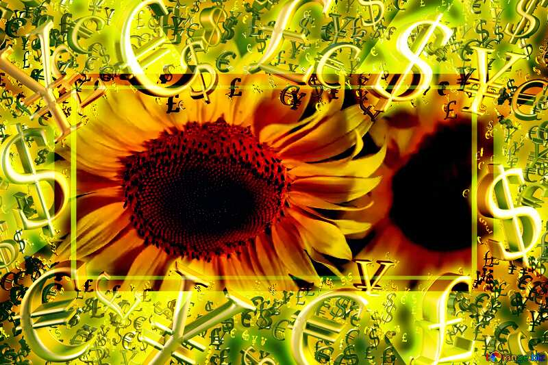 Beautiful flowers of sunflower Gold money frame border 3d currency symbols business template Sales Background №32817