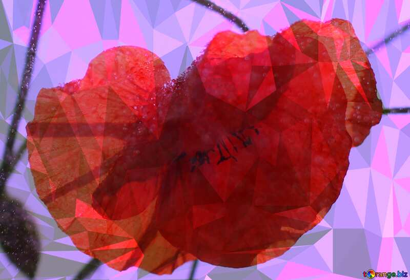 Flower poppy red Polygon background with triangles №37070