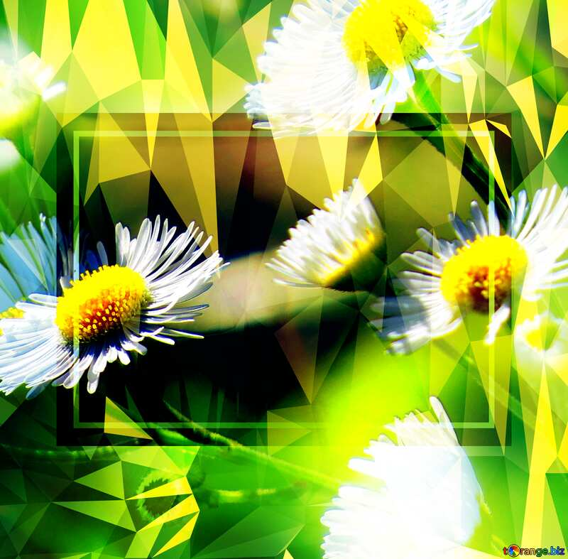 Daisies wallpaper on the desktop Polygon background with triangles frame template №34394