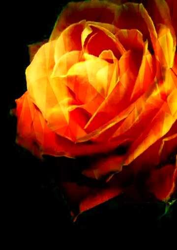 Эффект очень светлый. Яркие цвета. Фрагмент.