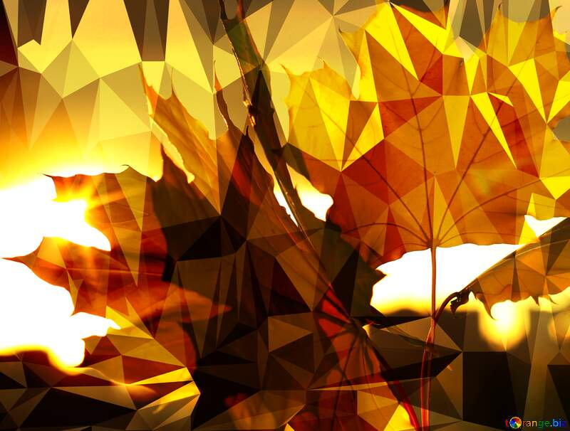 Autumn leaves Polygon abstract geometrical background with triangles №40887