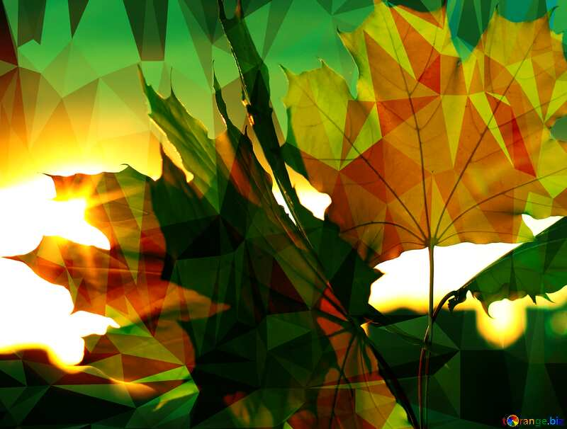 Autumn leaves sunset Polygon abstract geometrical background with triangles №40887