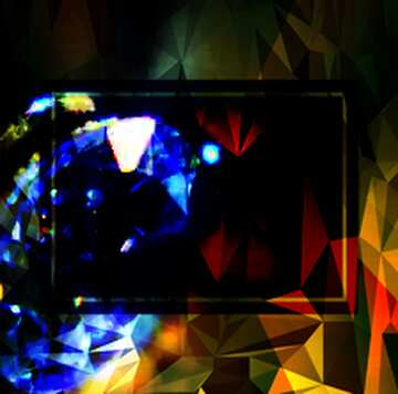 L'effetto del buio. I colori molto vivaci. Frammento.