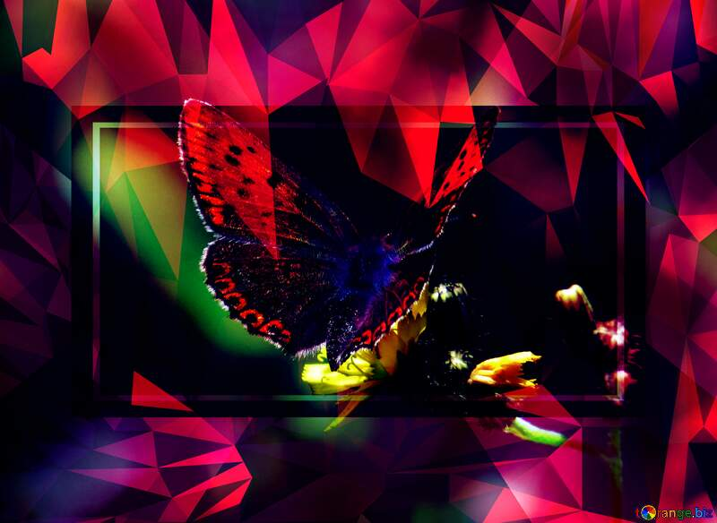 Flying butterfly Polygonal abstract geometrical background with triangles Template №25913