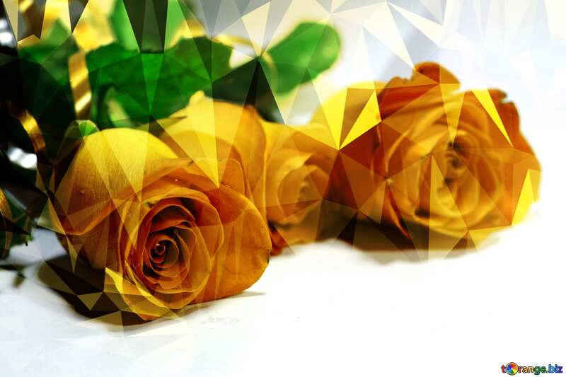 Roses at bed Polygonal abstract geometrical background with triangles №7203