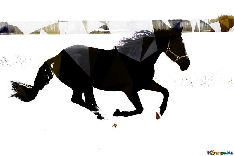Horse run in the snow Polygonal abstract geometrical background with triangles №18191