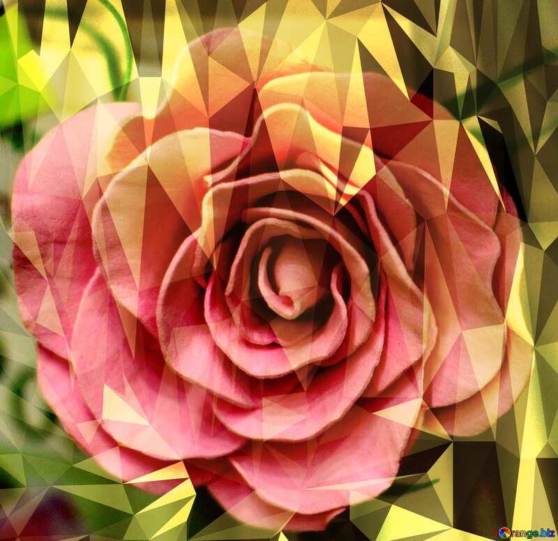 Rose flower Polygonal abstract geometrical background with triangles №48638