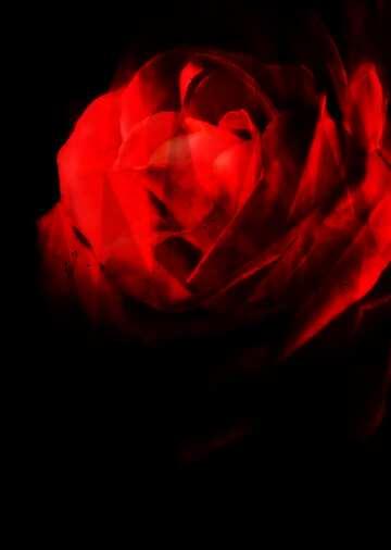 L'effetto del molto buio. L'effetto di macchiato rosso. Frammento.