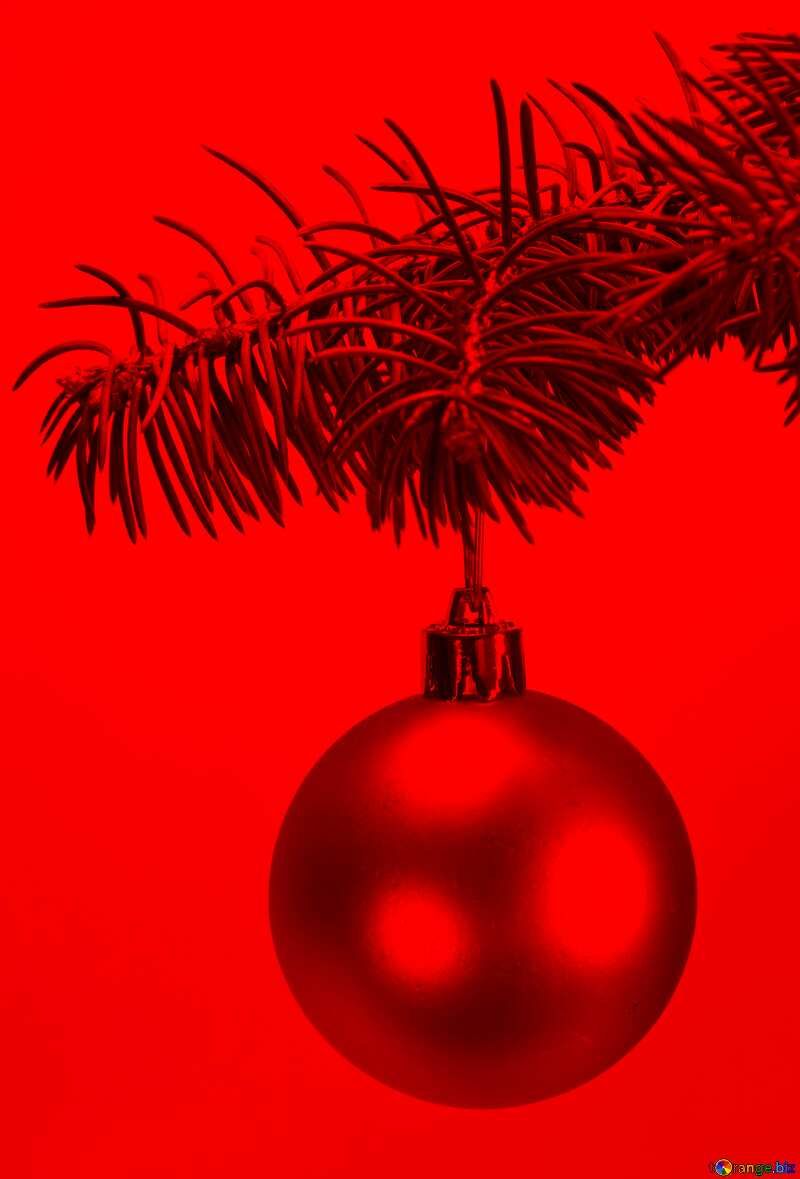 Toys  , Christmas tree ball on ,  branch. red background №6791