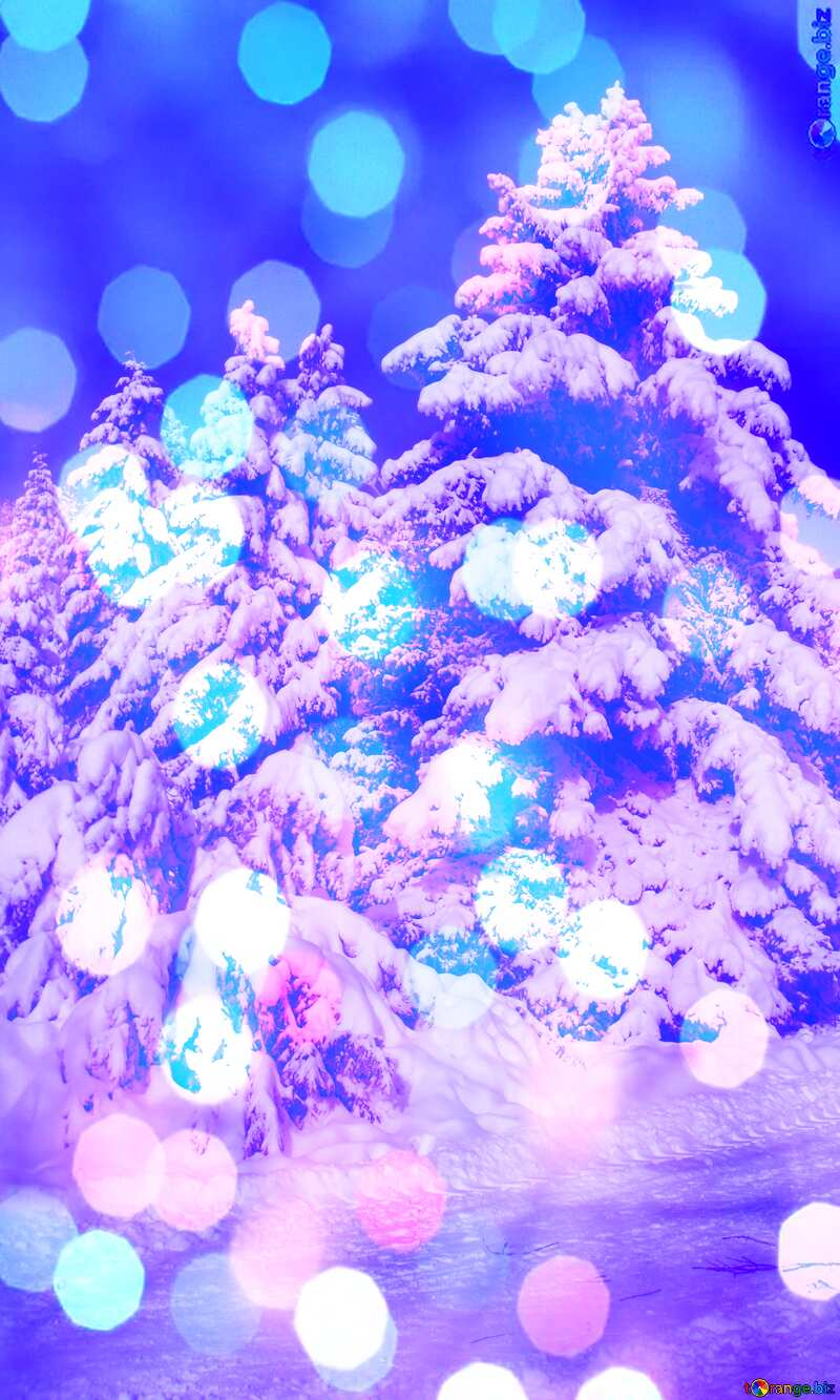 Snow  Trees  bokeh background blue №10520