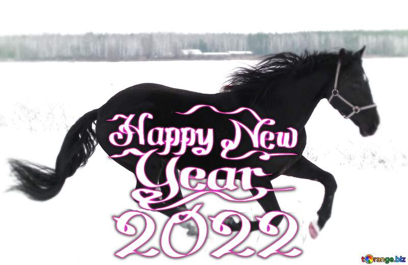 Horse in the snow happy new year 2021 №18191