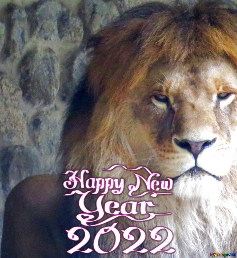 A lion happy new year 2020 №44974