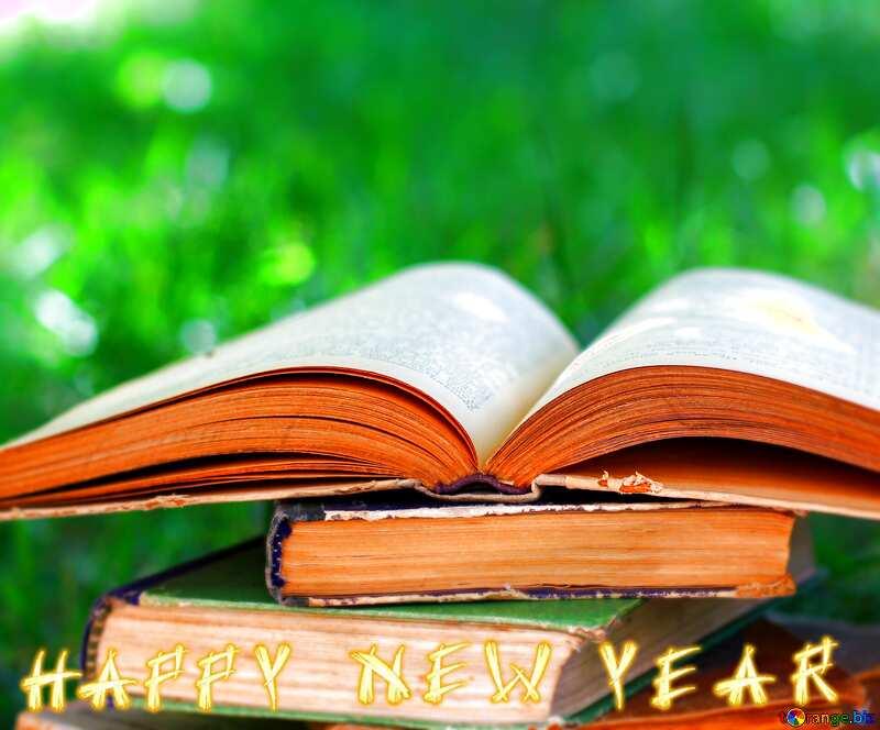 Reading books happy new year №34888