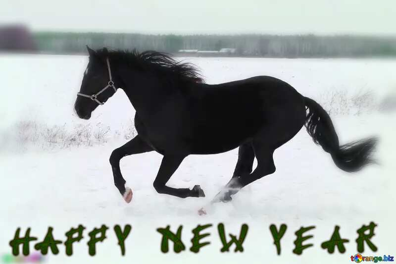 Horse in the snow Happy New Year №18191