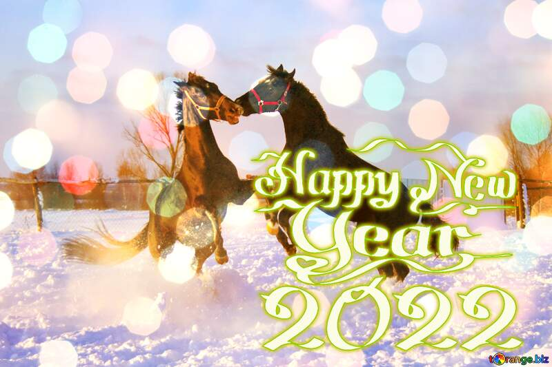 Horses Fight in the snow happy  new year 2022 background №3964