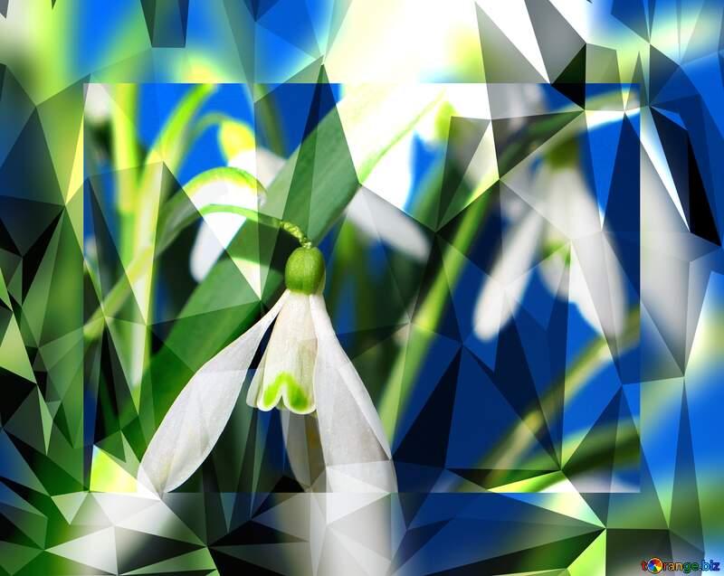 Spring flower  polygonal background №38327