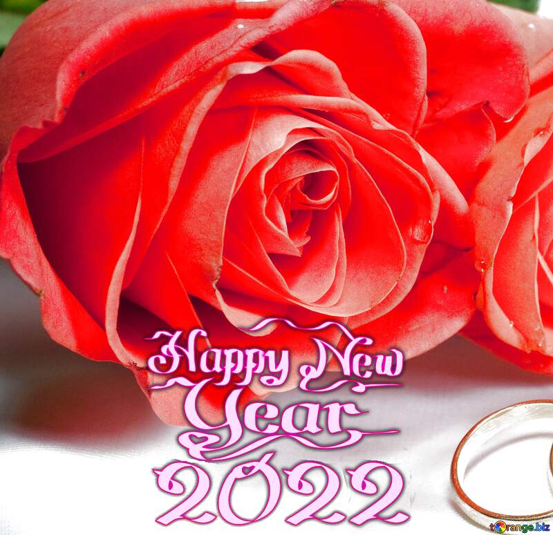 Two roses  ring   happy new year 2022 №7223