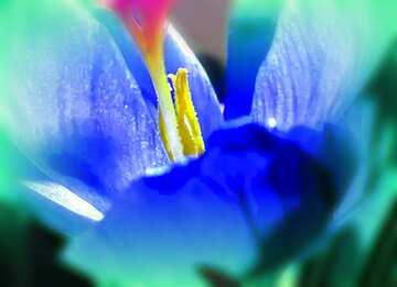 L'effetto della luce. Colori chiari. telaio sfocatura. Frammento.