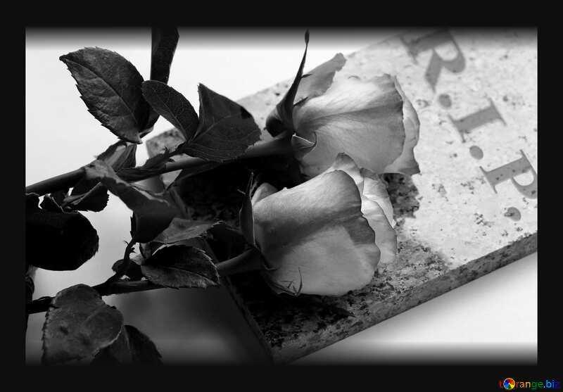 Rest In Peace R.I.P. dark frame black white №22833