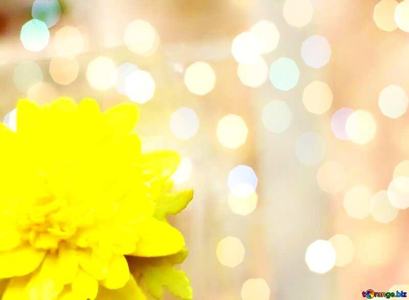 Yellow flower Art Greeting Card Background №48635