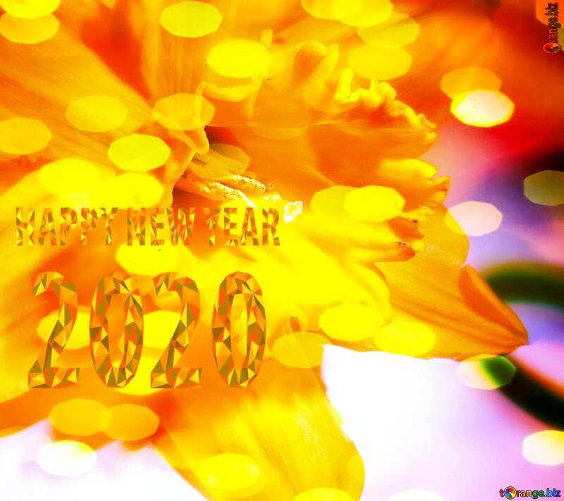 Christmas  flower happy new year 2020 №341