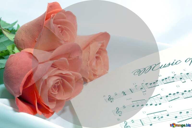 Rose flower music blank card template №7255