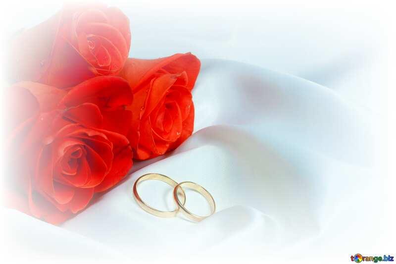 wedding Invitation Background white frame around №7235