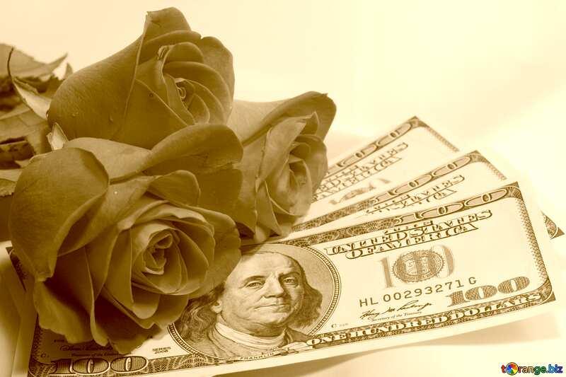Roses  and  dollars. sepia №7269