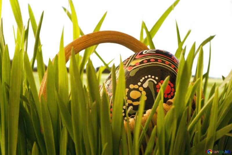 Passover Cart blur frame №8133