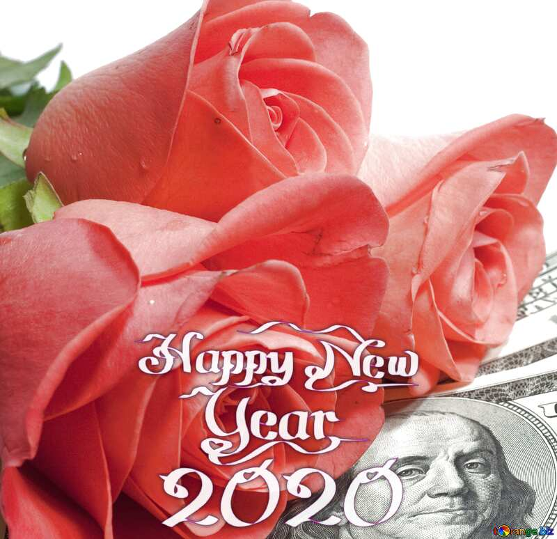 Roses  and  dollars. happy new year 2020 №7269