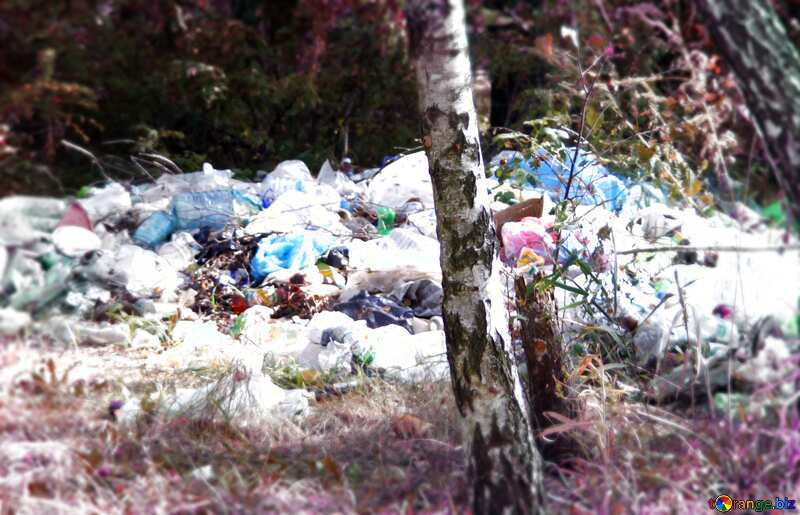 Mountains garbage in forest №5531