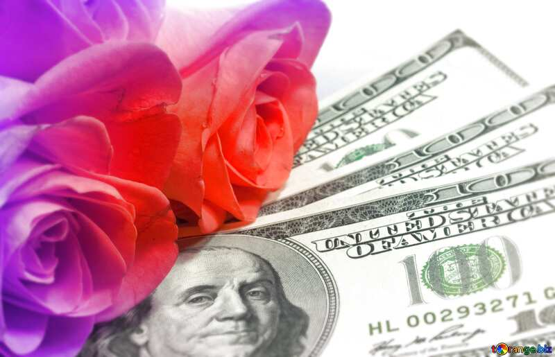 Roses  and  dollars. blur frame №7269